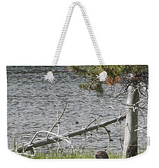 Weekender Tote Bag featuring the photograph River Otter by Belinda Greb