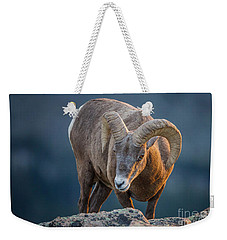 Rocky Mountain Big Horn Ram Weekender Tote Bag by Ronald Lutz