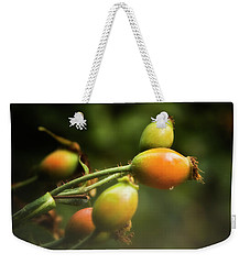 Rose Hips Weekender Tote Bag by Albert Seger
