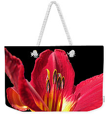 Weekender Tote Bag featuring the photograph Royal Red by Debbie Portwood