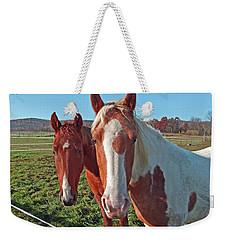 Ruff 'n Reddy Weekender Tote Bag