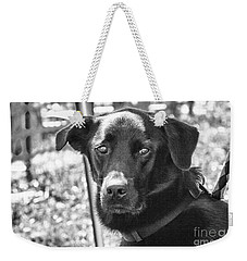 Weekender Tote Bag featuring the photograph Sad Eyes by Eunice Gibb