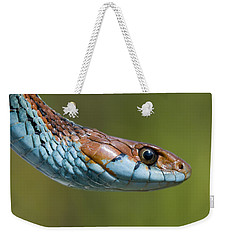 San Francisco Garter Snake Portrait Weekender Tote Bag by Sebastian Kennerknecht