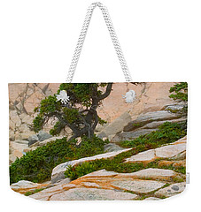 Weekender Tote Bag featuring the photograph Schoodic Cliffs by Brent L Ander