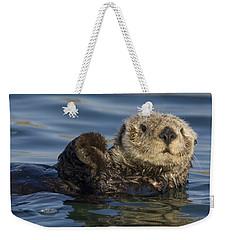 Sea Otter Monterey Bay California Weekender Tote Bag