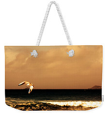 Sennen Seagull Weekender Tote Bag by Linsey Williams