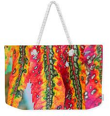 Sensuous Sumac Weekender Tote Bag