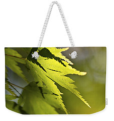 Weekender Tote Bag featuring the photograph Shades Of Green And Gold. by Clare Bambers