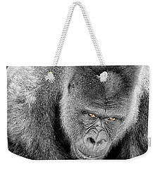Silverback Staredown Weekender Tote Bag by Jason Politte