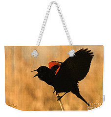 Singing At Sunset Weekender Tote Bag by Betty LaRue