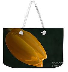 Single Again Weekender Tote Bag by Sherry Hallemeier