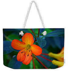 Weekender Tote Bag featuring the photograph Small Orange Flower by Tikvah's Hope