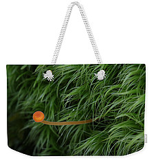 Weekender Tote Bag featuring the photograph Small Orange Mushroom In Moss by Daniel Reed