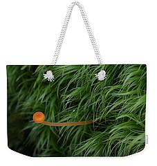 Small Orange Mushroom In Moss Weekender Tote Bag by Daniel Reed