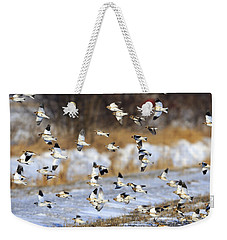 Snow Buntings Weekender Tote Bag by Tony Beck