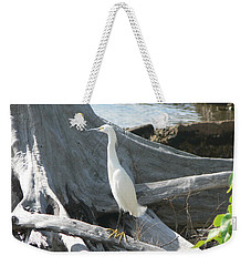 Weekender Tote Bag featuring the photograph Snowy Egret by Laurel Best