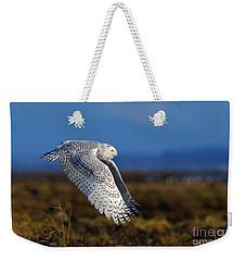 Snowy Owl 1b Weekender Tote Bag