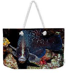 Soapfish Weekender Tote Bag