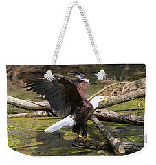 Weekender Tote Bag featuring the photograph Soaring Eagle by Elizabeth Winter