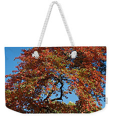 Weekender Tote Bag featuring the photograph Soaring Fall by Joseph Yarbrough