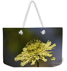 Weekender Tote Bag featuring the photograph Soft Yellow. by Clare Bambers