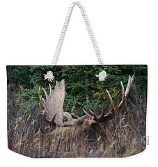 Weekender Tote Bag featuring the photograph Splendor In The Grass by Doug Lloyd