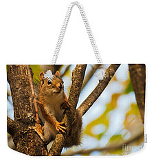 Squirrel On High Weekender Tote Bag by Cheryl Baxter