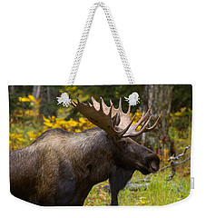 Weekender Tote Bag featuring the photograph Standing Proud by Doug Lloyd