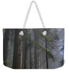Sun Breaking On Redwoods Weekender Tote Bag