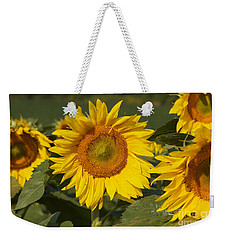 Weekender Tote Bag featuring the photograph Sun Flower by William Norton