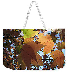 Weekender Tote Bag featuring the photograph Sun-lite Fall Leaves by Donna Brown