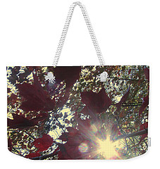 Weekender Tote Bag featuring the photograph Sun Shine Through by Donna Brown