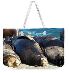 Weekender Tote Bag featuring the photograph Sunbathing Sea Lions by Chalet Roome-Rigdon
