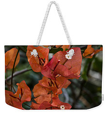Weekender Tote Bag featuring the photograph Sundown Orange by Steven Sparks