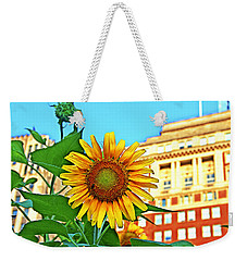 Weekender Tote Bag featuring the photograph Sunflower In The City by Alice Gipson