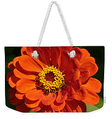 Weekender Tote Bag featuring the photograph Sunny Delight by Lingfai Leung