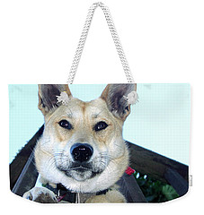 Weekender Tote Bag featuring the photograph Sunny by Rory Sagner