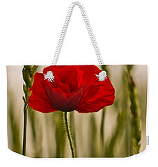 Weekender Tote Bag featuring the photograph Sunset Glow. by Clare Bambers