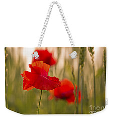 Weekender Tote Bag featuring the photograph Sunset Poppies. by Clare Bambers