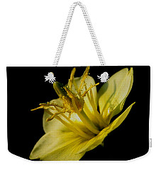Weekender Tote Bag featuring the photograph Suspended by Karen Harrison
