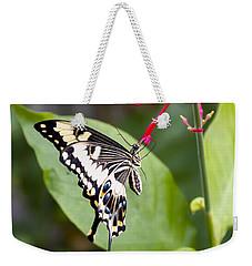 Swallowtail Butterfly Weekender Tote Bag