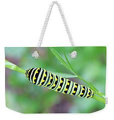 Swallowtail Caterpillar On Parsley Weekender Tote Bag