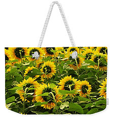 Tall Sunflowers Weekender Tote Bag