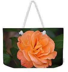 Weekender Tote Bag featuring the photograph Tangerine Rose by Donna  Smith