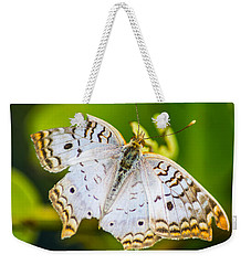 Weekender Tote Bag featuring the photograph Tattered Moth by Shannon Harrington