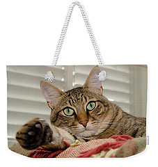 The Cat With Green Eyes Weekender Tote Bag