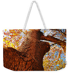 Weekender Tote Bag featuring the photograph The Deer  Autumn Leaves Tree by Peggy Franz