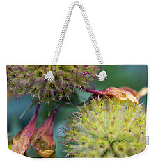 The End Of Summer Weekender Tote Bag by Susan Stone