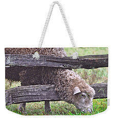 Weekender Tote Bag featuring the photograph The Grass...on The Other Side by Lydia Holly