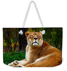 The Lioness Weekender Tote Bag by Davandra Cribbie